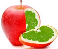 что такое ГМО продукты, вред ГМО