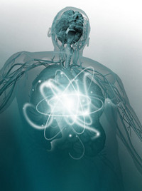 как ускорить обмен веществ, быстрый метаболизм