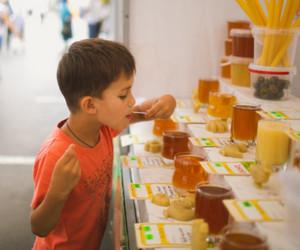 засахаренный мед, как определить настоящий мед, выбрать, растопить, жидкий