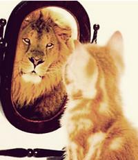 вера в себя, уверенный в себе человек, уверенный человек
