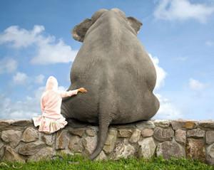 как съесть слона